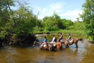 Franck Mourier, ici en compagnie de jeunes cavaliers et cavalières, possède deux haras, l'un dans le Kentucky et l'autre en Floride, où il élève les futurs champions des courses d'hippodrome. Intuition livre isabelle fontaine