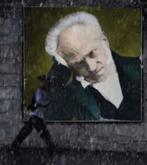 schpenhauer intuition